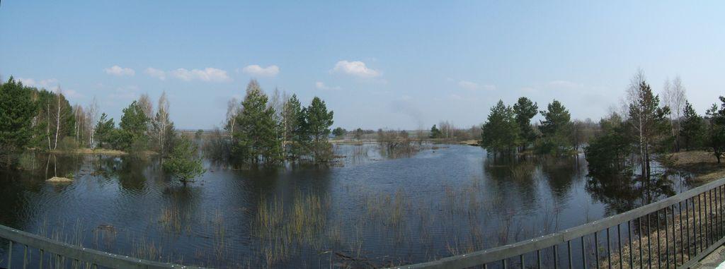 Вид с моста через Сколодину